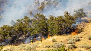 Wildfire Workers in Utah